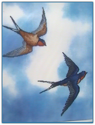 Barn Swallows / Crossed Wing Collection