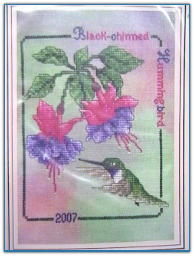 Black Chinned Hummingbird 2007 / Crossed Wing Collection