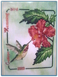 Calliope Hummingbird / Crossed Wing Collection