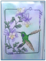 Green Violet-Eared Hummingbird '06 / Crossed Wing Collection